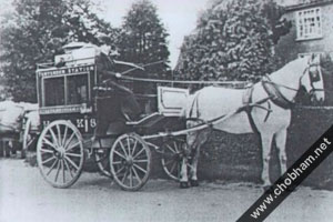 Horse and Cart Photo