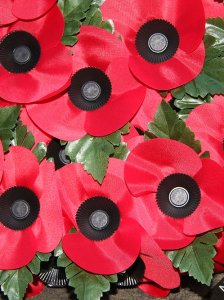 Remembrance Sunday, 9th November 2014